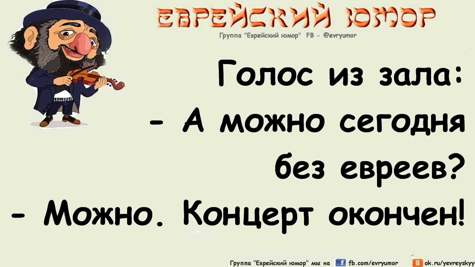 Про снеговиков, еврейские анекдоты в картинках с надписями новые
