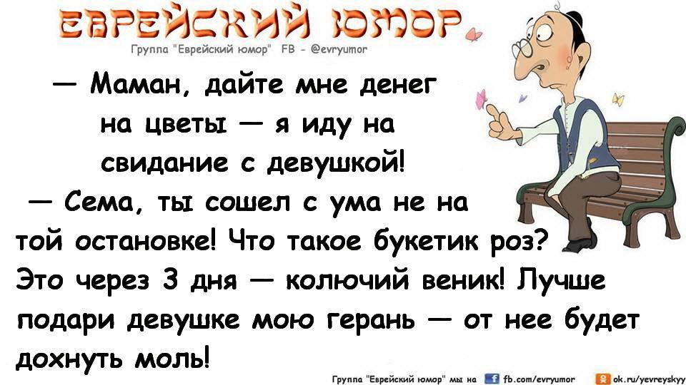 Открытки еврейский юмор, лучшие картинки надписью