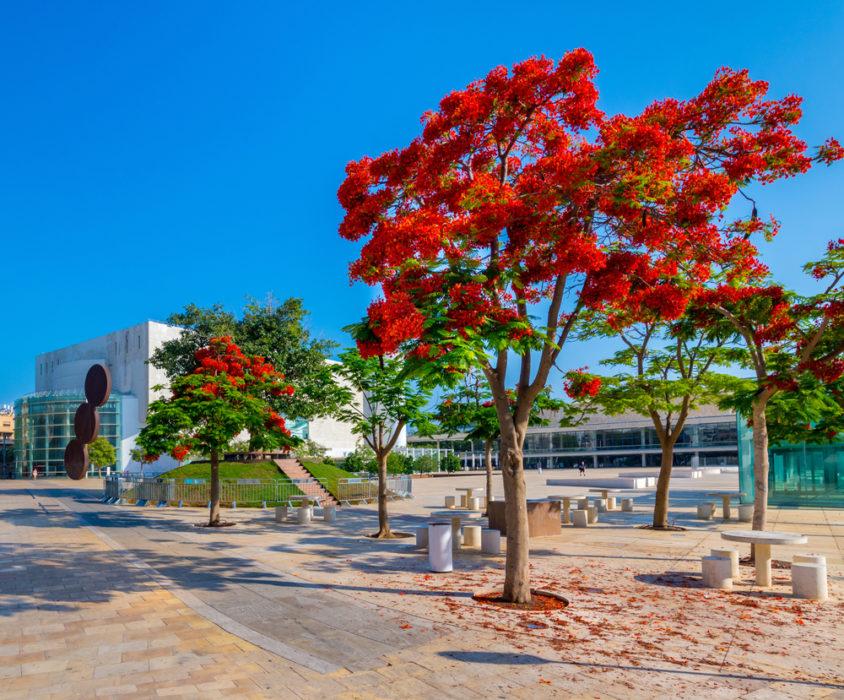 TEL AVIV ISRAEL Тель Авив