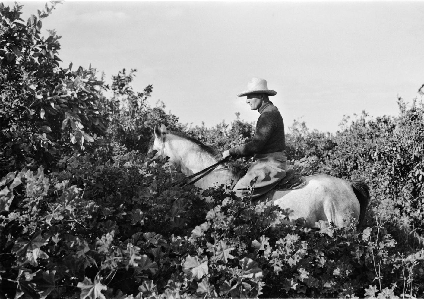 Ra'anana, 1938. Rudi Weissenstein photo