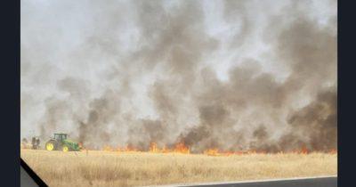 Пшеничное поле в Киббуце пылает. Поджог спровоцирован воздушным змеем