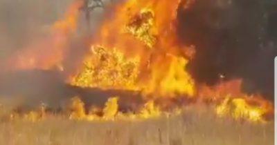 И снова замешан воздушный змей. Огромный пожар вдоль границы с Газой