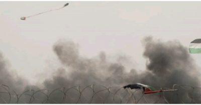 Очередной змей из Газы спровоцировал пожар в заповеднике