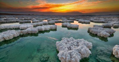 Есть ли жизнь на Мертвом море?