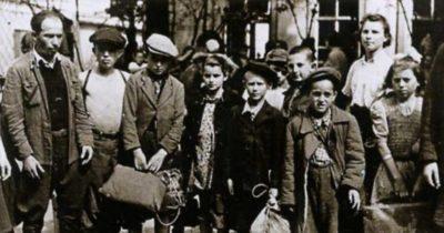 Так «прогрессивные» страны принимали беженцев из 3го рейха