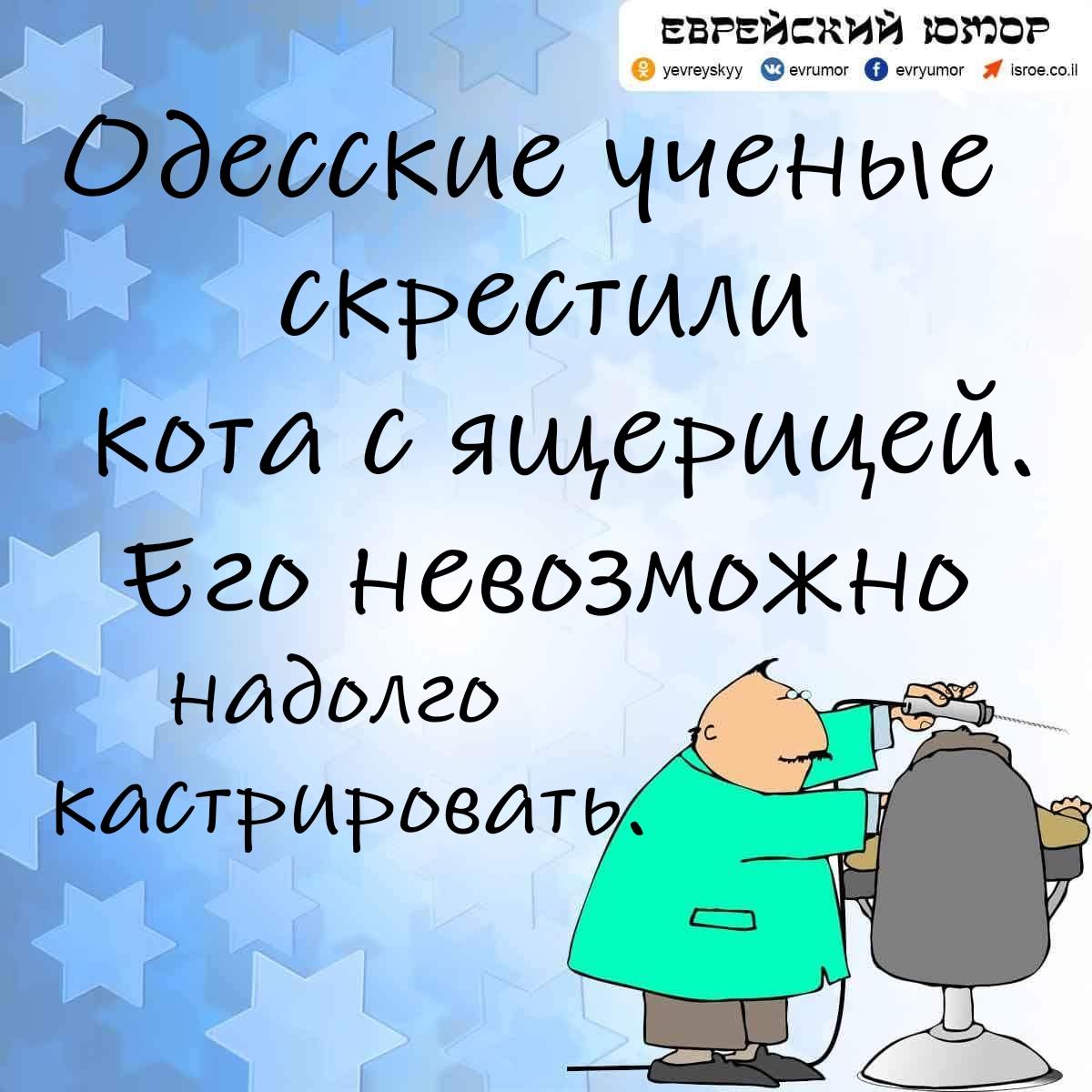 Еврейский юмор. Одесский анекдот. Одесские ученые...