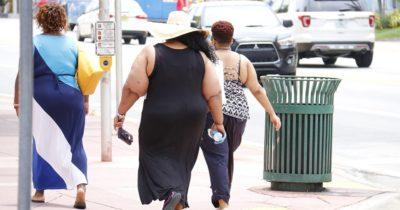 Ученые института Вейцмана нашли причину рецидивирующего ожирения
