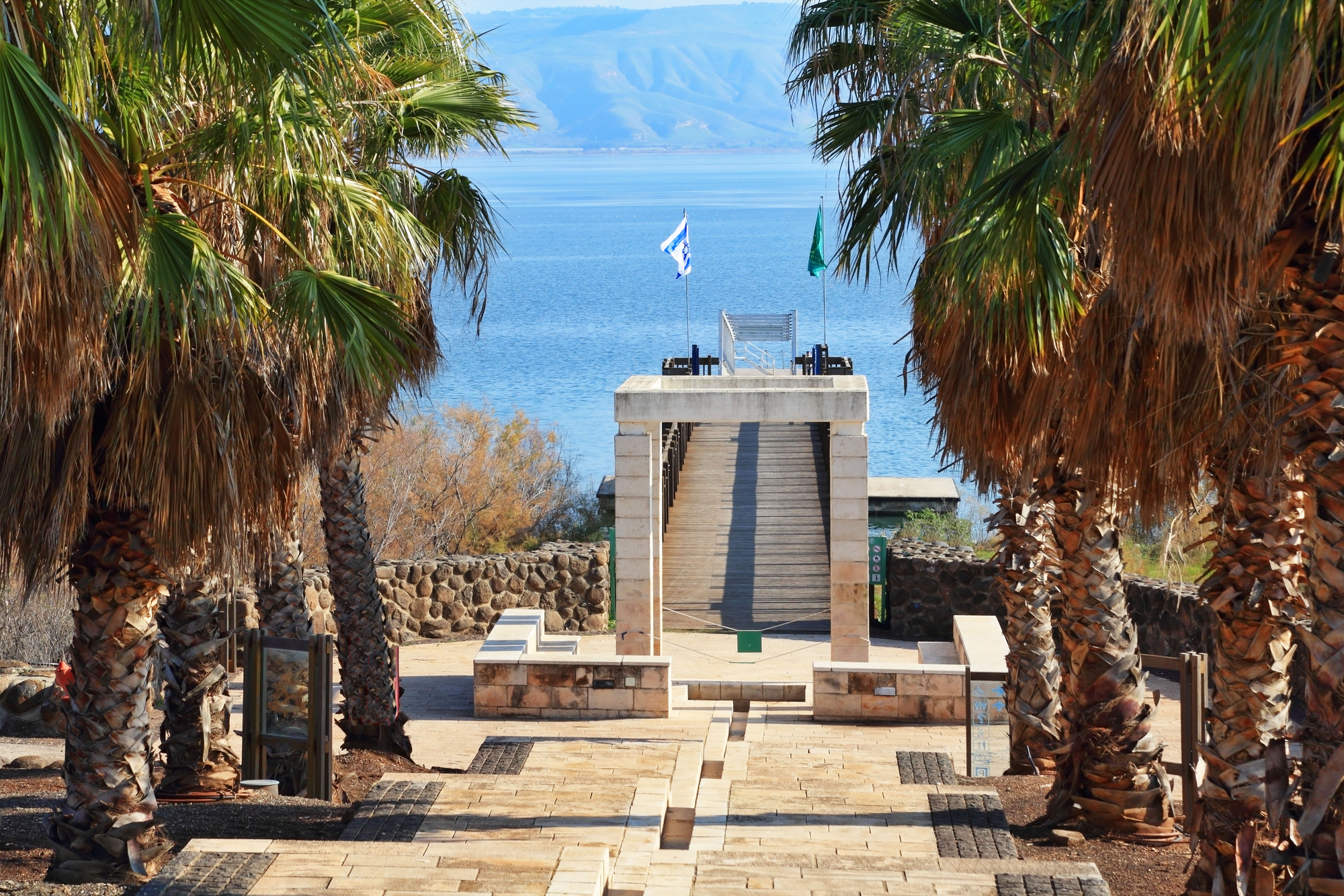 Palm alley goes out to the Sea of ​​Galilee, Israel