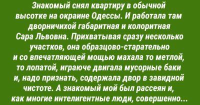 Суровая и справедливая Сара Львовна! «В следующий раз — без пакетика и в ж…»