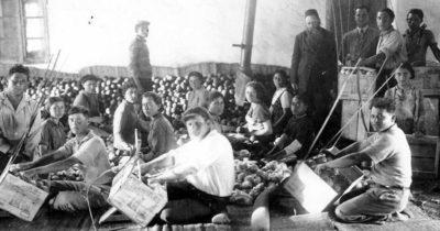 Земледельцы из кибуца — герои, которые меняли израильскую жизнь к лучшему