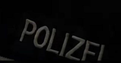 «Бригада  волков 44», планировала создать нацистское государство. Запрещена